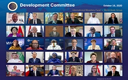 Virtual Development Committee October 2020